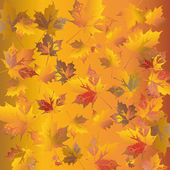 Golden leafs — Vector de stock