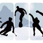 Winter sport silhouettes — Stock Vector