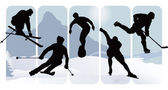 Winter sport silhouettes — Stock Vector