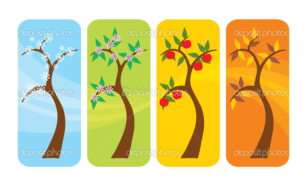 Vector illustration of a tree in spring, summer, autumn and winter — Stock Vector #3430326