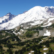 Royalty-Free Stock Photo: Mount Rainier