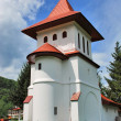 Stock Photo: Brancoveanu monastry