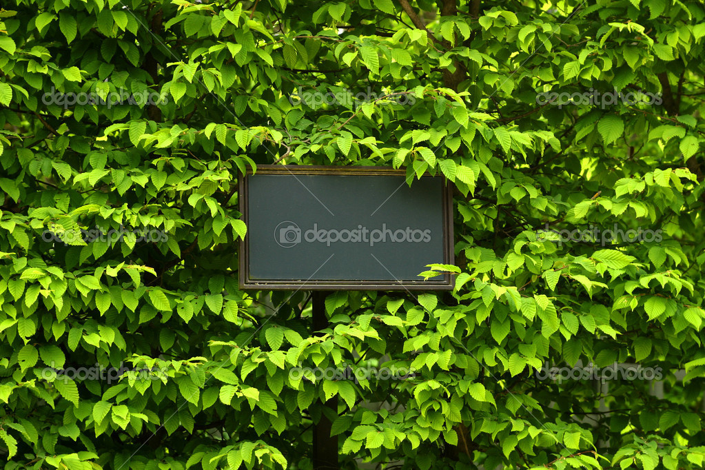 Billboard, label in green leaf background with place for your text — Stock Photo #2918014