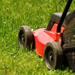 Lawnmower on grass — Stock Photo