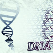 DNA Helix Illustration — Stock Photo