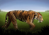 Tiger Illustration — Stockfoto