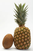 Coco and pineapple — Stock Photo