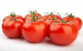Set of ripe and juicy red tomatoes. XXL — Stock Photo