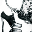 Fancy shoe and silver bag - Stock Photo