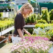 Pretty blond woman in gardening center — Stock Photo