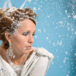Royalty-Free Stock Photo: Winter depression
