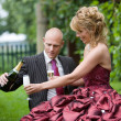 Wedding toast — Stock Photo