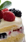 Sumptuous dessert — Stock Photo