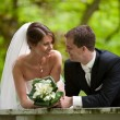 Foto Stock: Happy bride and groom