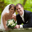 Bride and groom - Stock fotografie