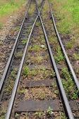 Crossing railway — Foto Stock