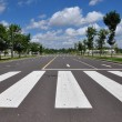 Zebra walk way traffic symbol — Stock Photo #3571822