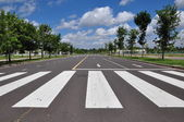 Zebra walk way traffic symbol — Stock Photo