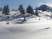 Winter slope. — Stock Photo