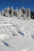Zima śnieg stok — Zdjęcie stockowe