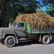 Lorry with hay. — Stock Photo
