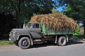 Lorry with hay. — Photo