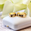 Golden wedding rings — Stock Photo