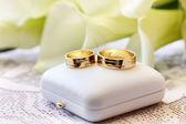 Zlaté snubní prsteny — Stock fotografie