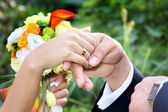Newlywed couple holding hands — Stock Photo