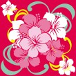 Royalty-Free Stock Vector Image: Hibiscus