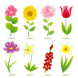 8 flower icons set — Stock Vector