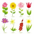 Stock Vector: 8 flower icons set