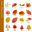 Autumn foliage leaf icons set — Stock Vector