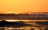 Sunset Surfer — Stock Photo