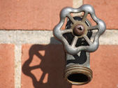 Backyard Faucet — Stock Photo