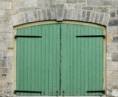Double Green Doors — Stock Photo