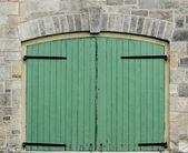 Double Green Doors — Stock Photo