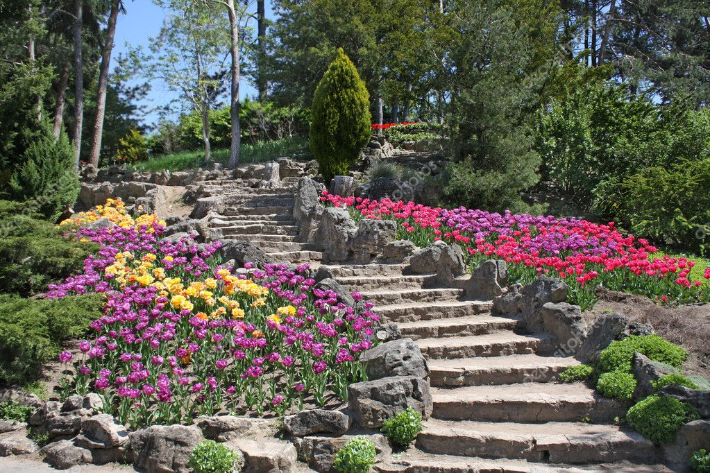 Sweeping stone stairway amid multicolored tulips — Stock Photo #2973520