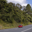 Road in New Zealand — Stock Photo #2994822