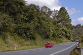 Road in New Zealand — Stock Photo