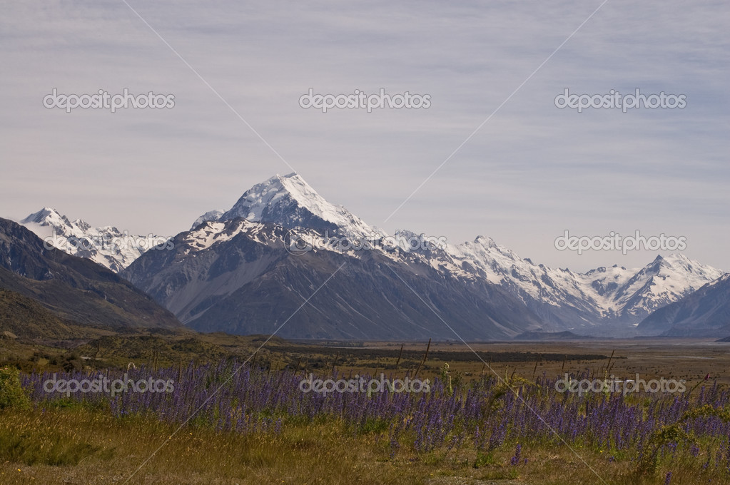 Traveling by car, Mount Cook, New Zealand. — Stock Photo #2994917