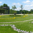 Great Parterre of Schonbrunn Palace - Stock Photo