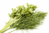 Green dill and parsley — Stock Photo