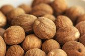 Nutmeg close-up — Stock Photo