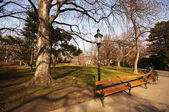 Stadtpark in Viena — Stock Photo