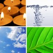 Basic elements of nature — Stock Photo