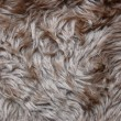 Royalty-Free Stock Photo: Pelt texture