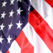 Flag of the usa — Stock Photo #2988934