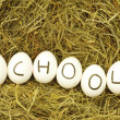 School — Stock Photo