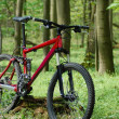 Stock Photo: Mountainbike